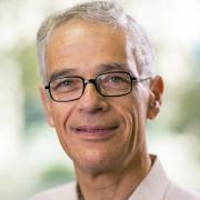 Prof. David Mendlovic
